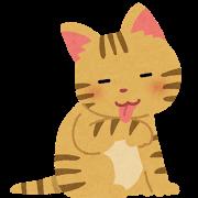 に 小判 類語 猫