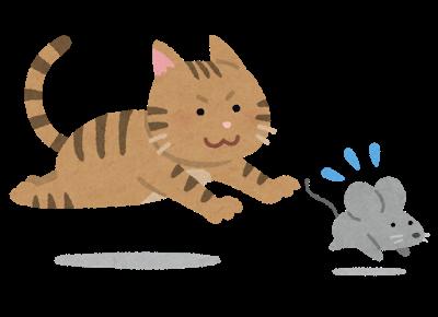 猫 を 噛む 窮鼠
