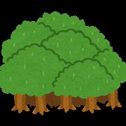 を 見 木 ず て 意味 を 見 森