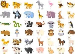 動物のことわざ一覧